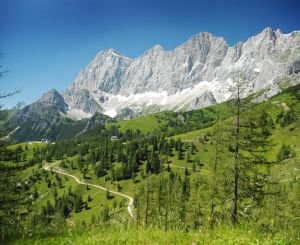 Alpine pastures at the foot of the Dachstein